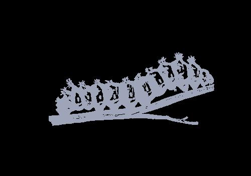 Caterpillar | Wild about Bath